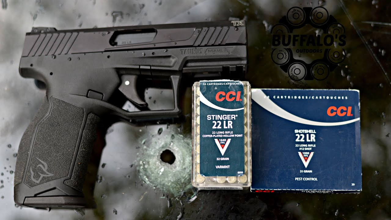 Taurus TX22 and CCI Ammunition ~ Windshield