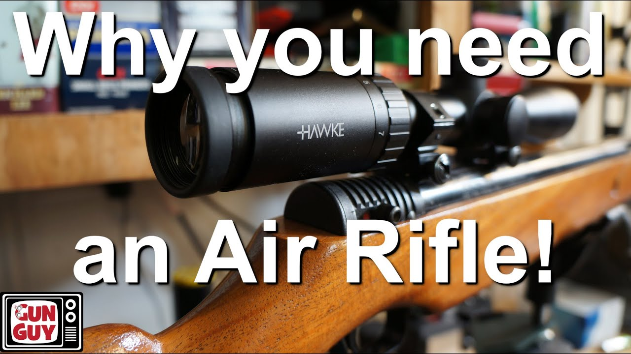 Why you need an air rifle if you live in the city