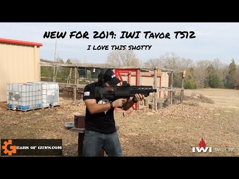 NEW for 2019 IWI Tavor TS12 First Look