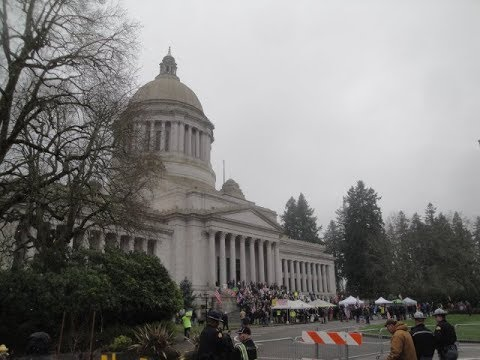 Washington State Gun Rights Rally    January 17, 2020