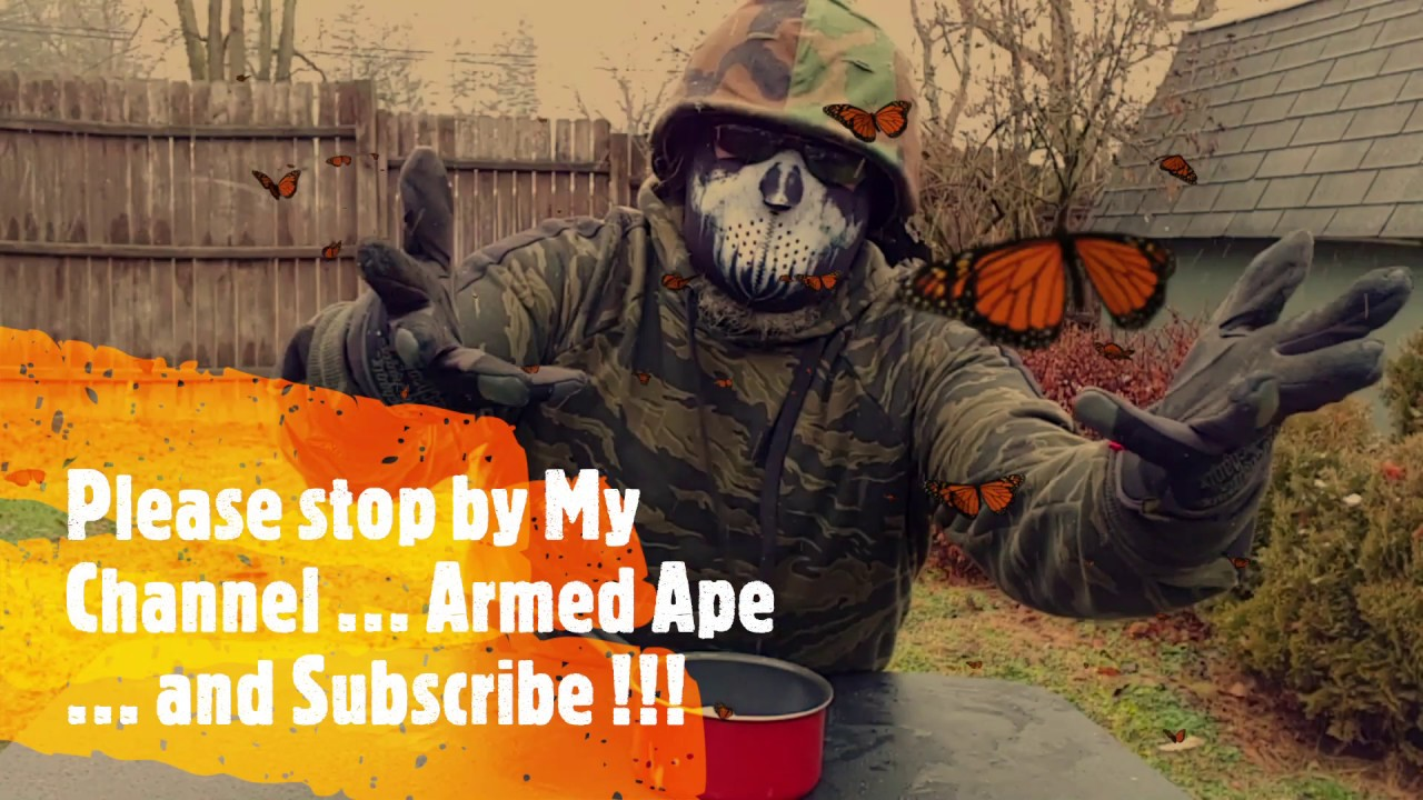 A Shout-Out to Armed Ape Channel !!!