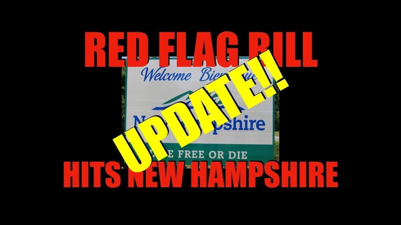 New Hampshire House Votes For Red Flag Law