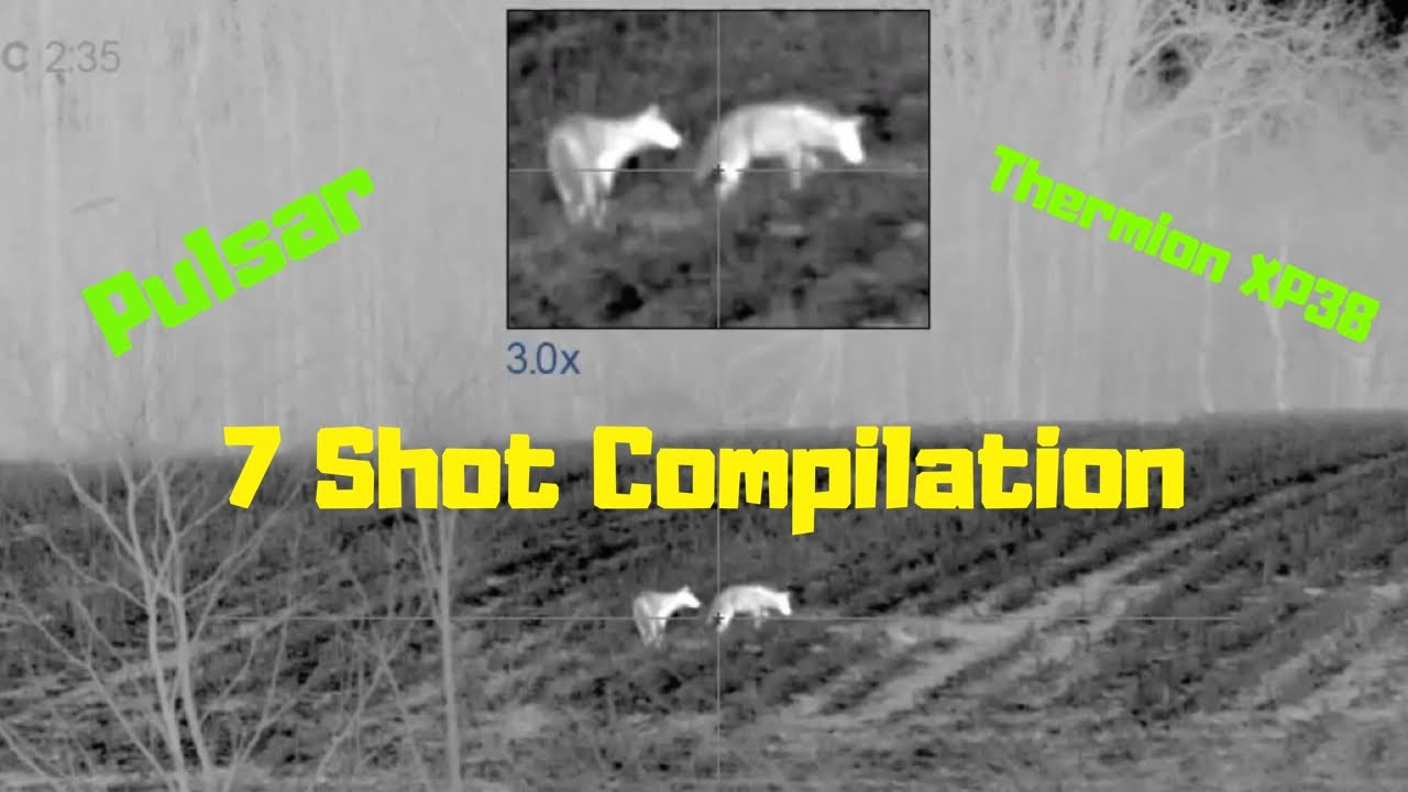 BEST THERMAL SCOPE FOR COYOTE HUNTING | 7 COYOTES with 6.5 Grendel