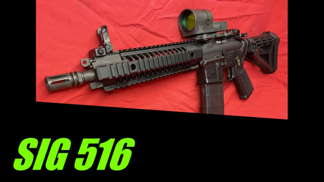 SIG 516   possible HK416 clone???