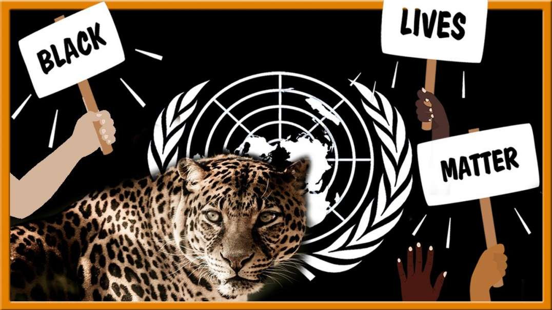 Black Lives Matter, the UN, and the Leopard in Bible Prophecy.mp4