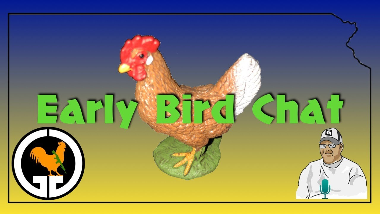 Early Bird Chat #52